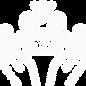 Site_web [Récupéré]-61.png