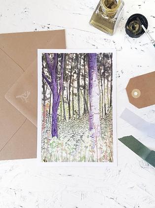 Dutch forest | postcard