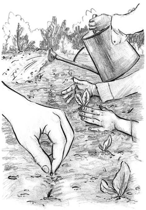 Ink illustration for the book 'Een kerk die kan' (2019)
