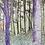 Thumbnail: Dutch forest | postcard