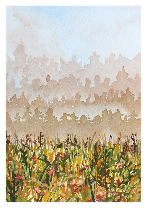 Misty pink field | postcard