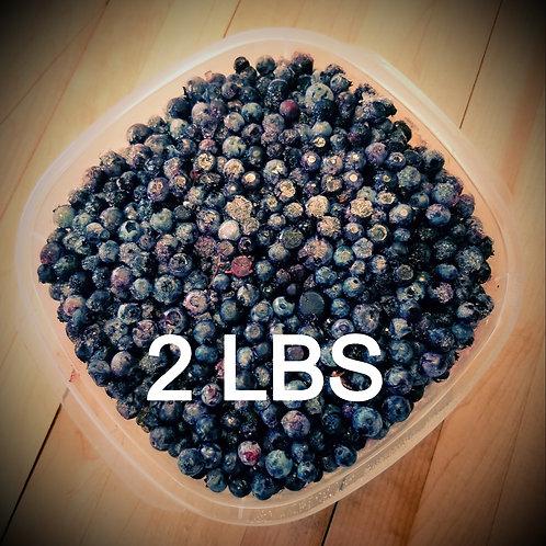 Frozen Wild Blueberries- 2 lbs