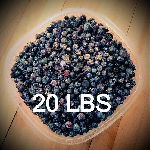 Frozen Wild Blueberries- 20 lbs