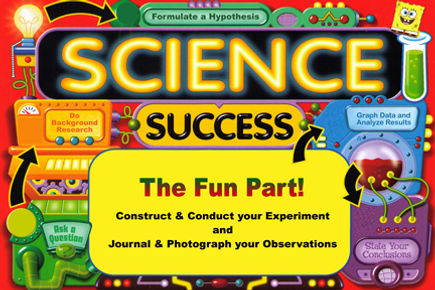 science+poster+for+web.jpg
