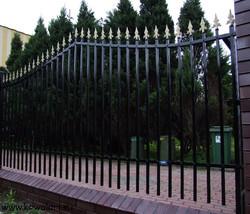 Ogrodzenie Władysław Jagiełło