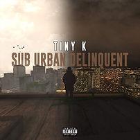 Tiny K Album.jpg