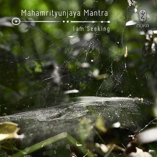 Maha Streaming Album Art.jpg