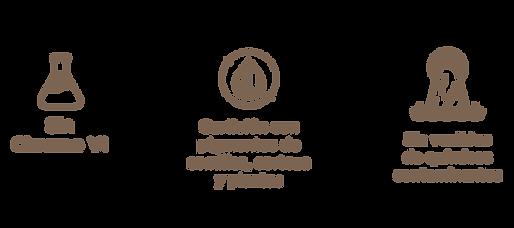 CAMPAÑA-NOVIEMBRE.png