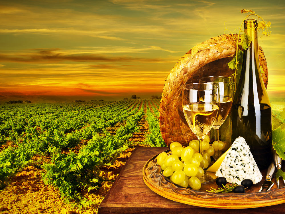 Wine and cheese romantic dinner outdoor, table for two with a vineyard view, fresh grapes and wineglass at a restaurant, warm autumn sunset, grape field landscape at harvest, food still life