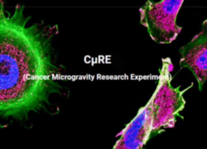 Cancer Microgravity Research Experiment