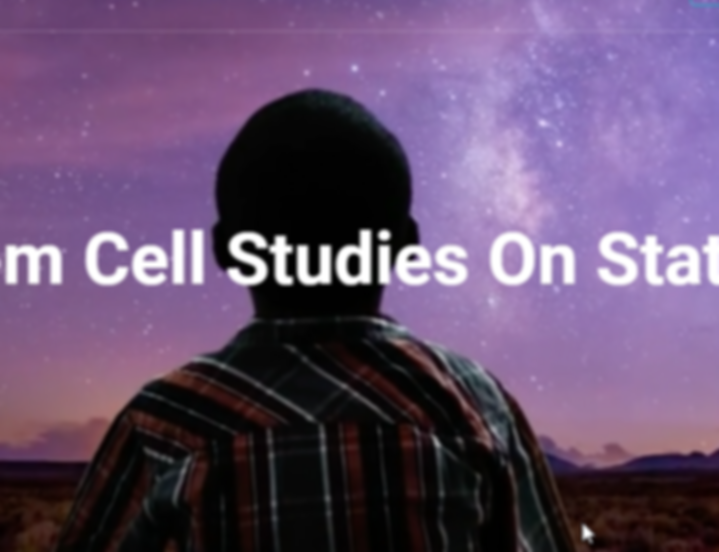 Stem cell.png