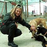 Sabine Jahn SOS Hunde Gran Canaria