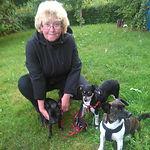 Rita Halberscheidt SOS Hunde Gran Canaria