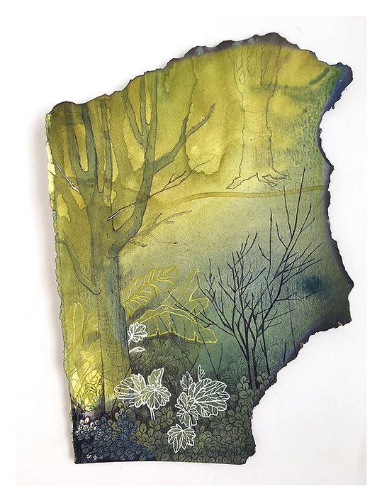 devakadu-forestfragments-rwa.jpg