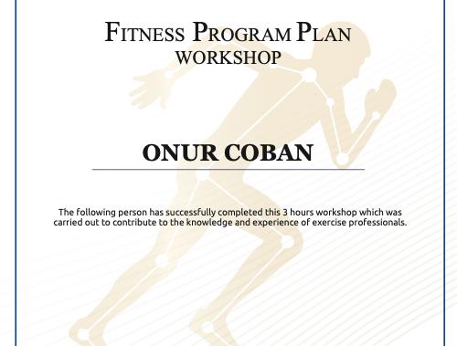 FMI - Fitness Program Plan