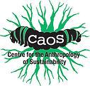 Logo_CAOS-OPT.jpg