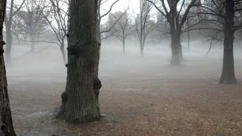Foggy Bottom.jpg