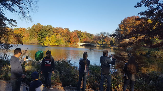Peope viewing the lake in Central Park