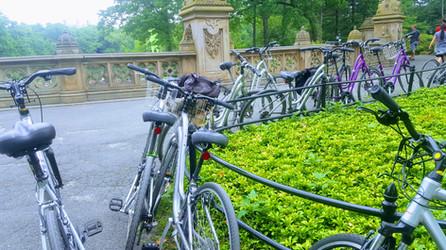 Bethesda Bikes.jpg
