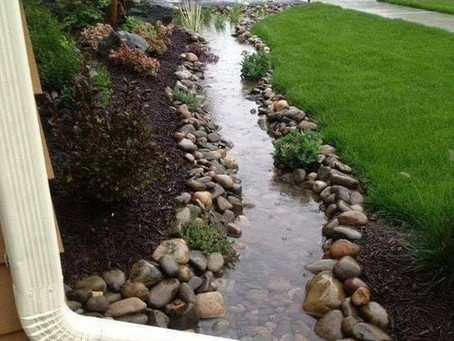 This is called 'rainscaping'. What do you think?