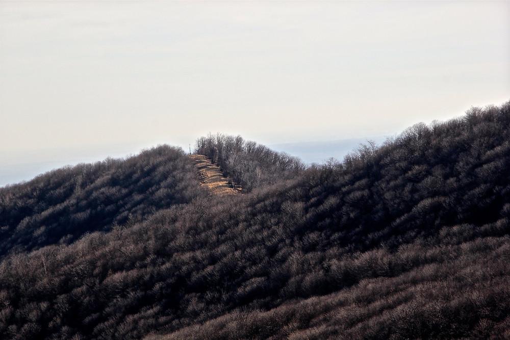 Veduta della dorsale dal sentiero per L'Alpe Verdina