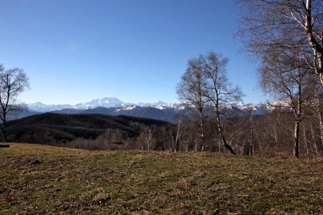 Veduta della Catena del Monte Rosa dall'Alpe Verdina