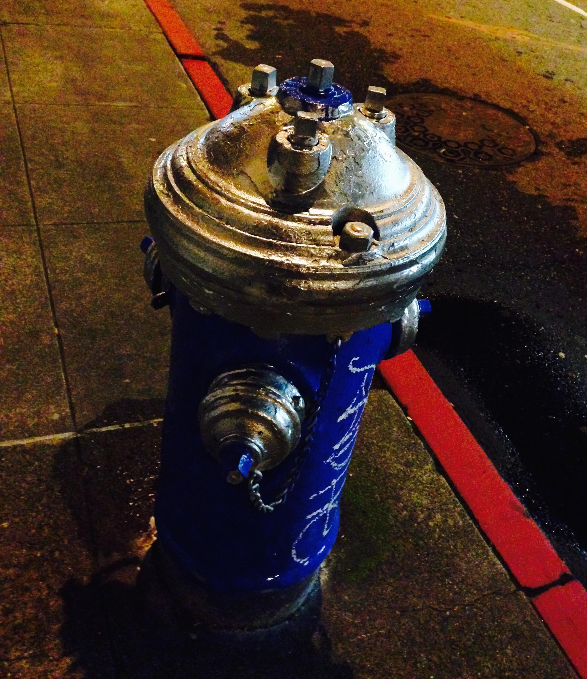 San Francisco Fire Hydrant.jpg