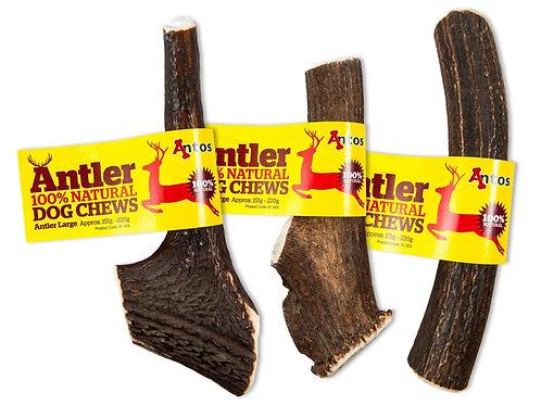 Antler (Large)