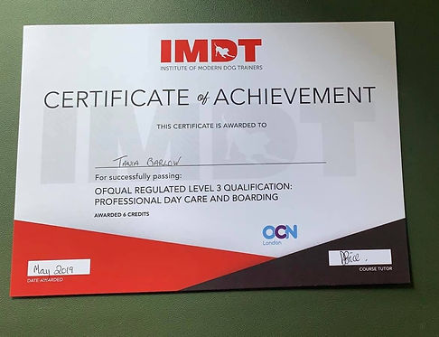 IMDT certificate.jpg