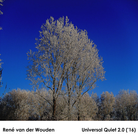 RENE VAN DER WOUDEN: Universal Quiet (2008)