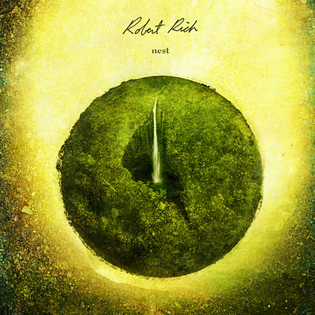ROBERT RICH: Nest (2012)