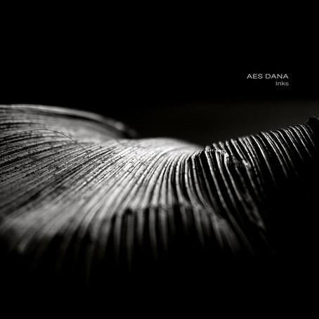AES DANA: Inks (2019) (FR)