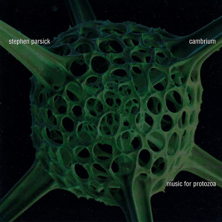 STEPHEN PARSICK: Cambrium - Music For Protozoa (2009)