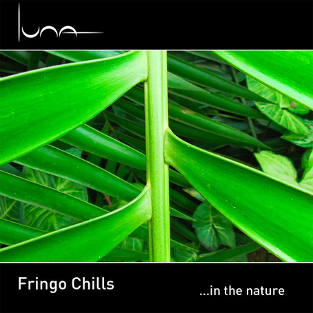 FRINGO CHILLS: ...in the Nature (2018) (FR)