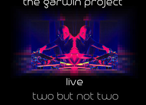 THE GARWIN PROJECT: Two But Not Two  (2020)