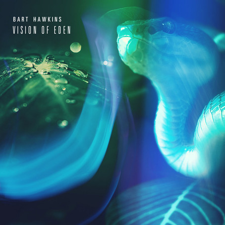 BART HAWKINS: Vision of Eden (2021) (FR)