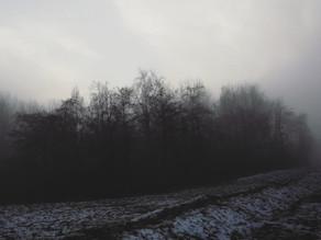 DASK: Winter Stone (2021)