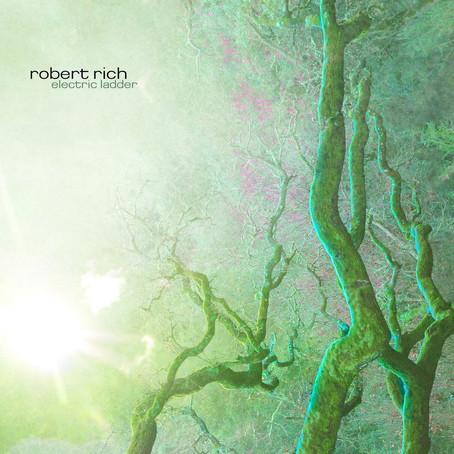 ROBERT RICH: Electric Ladder (2006)