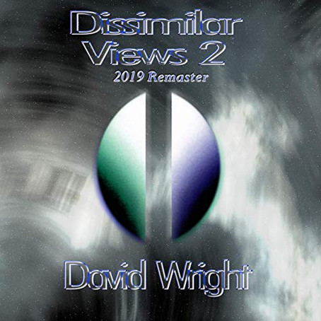 DAVID WRIGHT: Dissimilar Views 2 (2019)