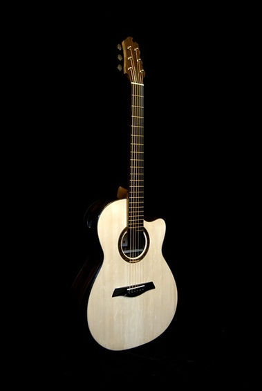 Echizen Guitars R1 Ziricote 2013