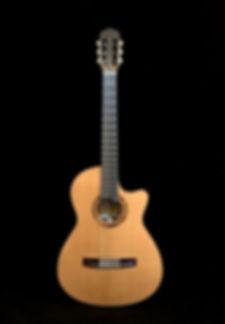Echizen Guitars Jazz Nylon