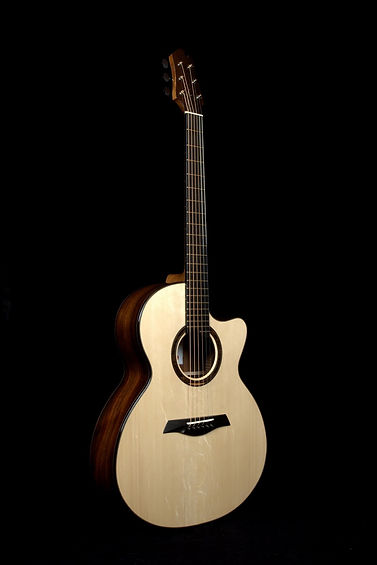 Echizen Guitars R3 Brazilian Rosewood 2015