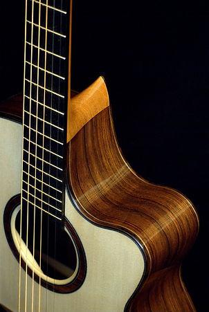 Echizen Guitars Flush Cutaway