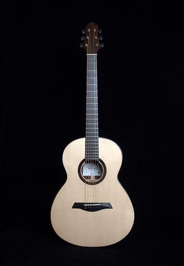 Echizen Guitars Steel Strings R2