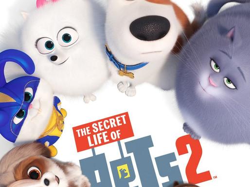 The Secret Life of Pets 2 (2019) Film Review