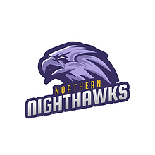 Northern Nighthawks 1.png