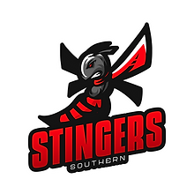 Southern Stingers 1.png