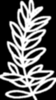 Floral Logo Elements - 37 White.png
