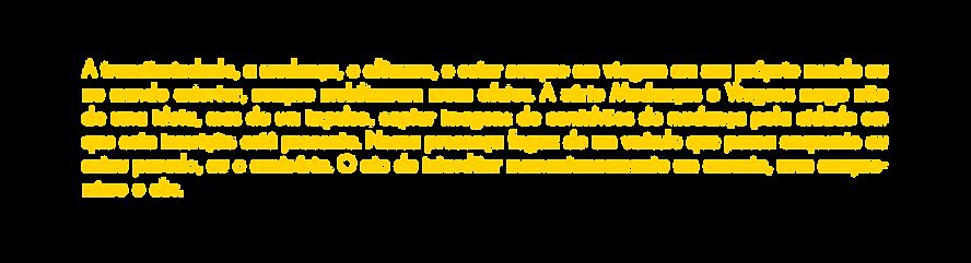 MUDANÇAS-E-VIAGENS-SITE.png