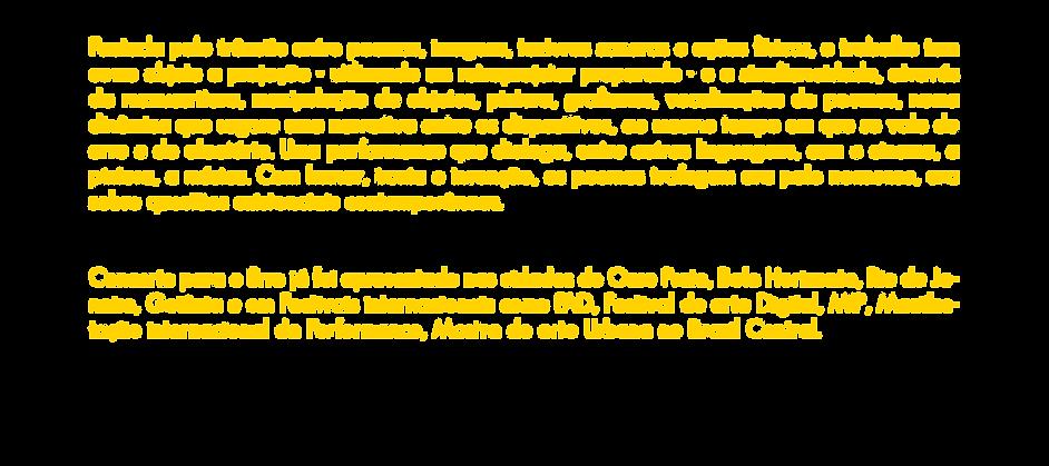 CONCERTO-PARA-O-ERRO-SITE.png